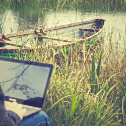 Working on Laptop at Pond