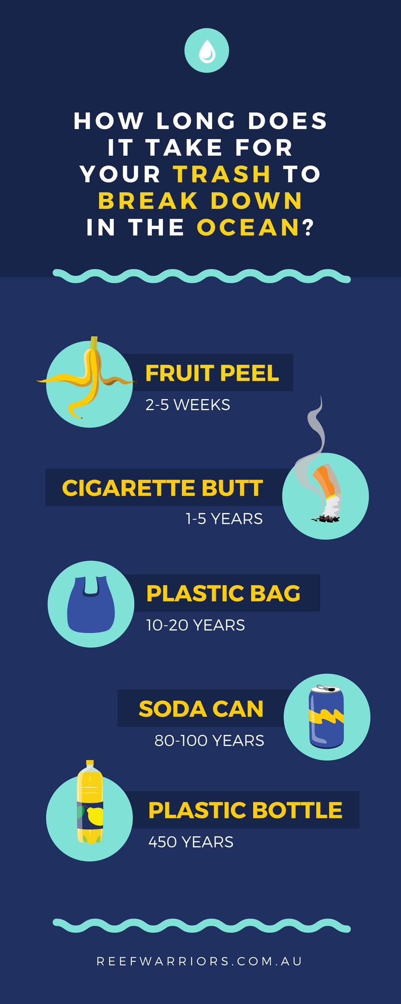 Ocean Trash Breakdown Infographic