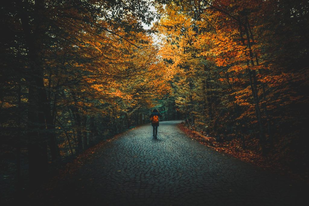 Fall path with person walking