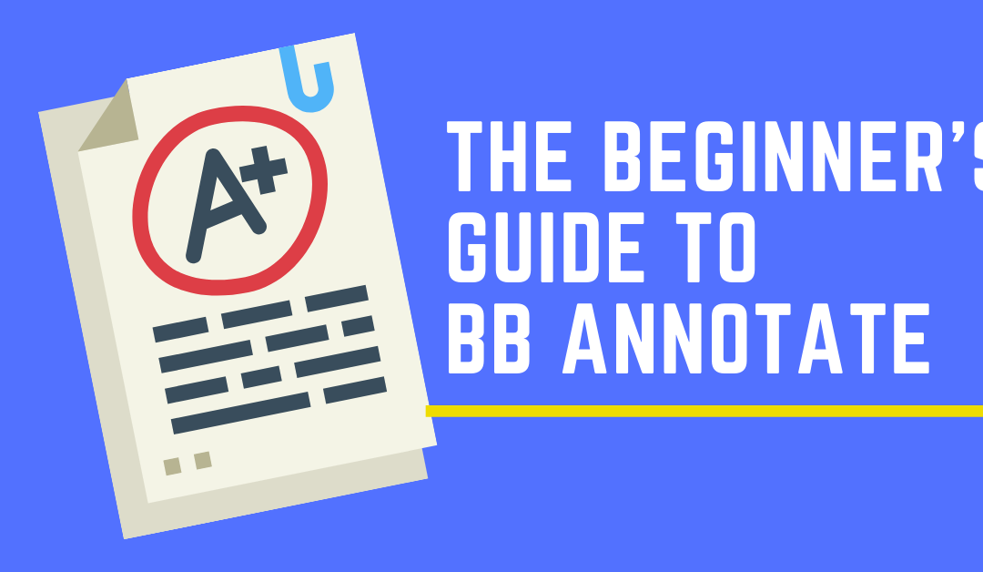 The Beginner's Guide to BB Annotate